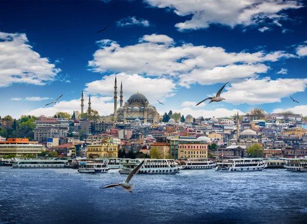 Сколько домов было продано в Турции в первом полугодии 2021 года?